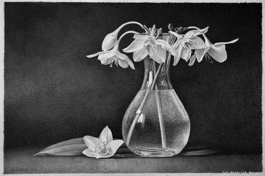 Weiße Blüten Von Dietrich Moravec At Artists24 Net Künstler Kunst